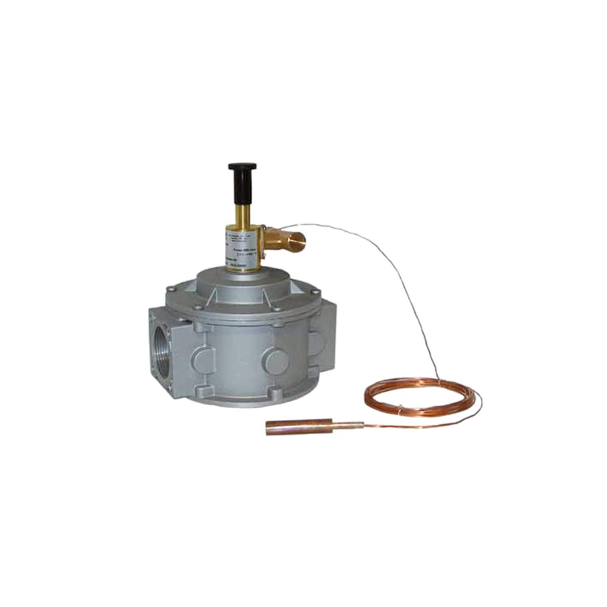Liquid and gaseous fuel interception valve